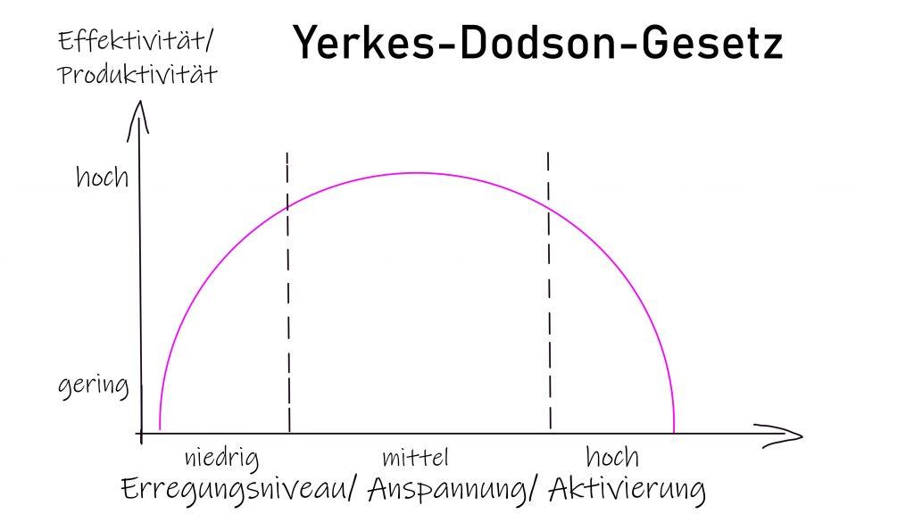 Lerntheorie, operante Konditionierung, Klicker, positives Lernen, positives Training, Yerkes-Dodson-Gesetz